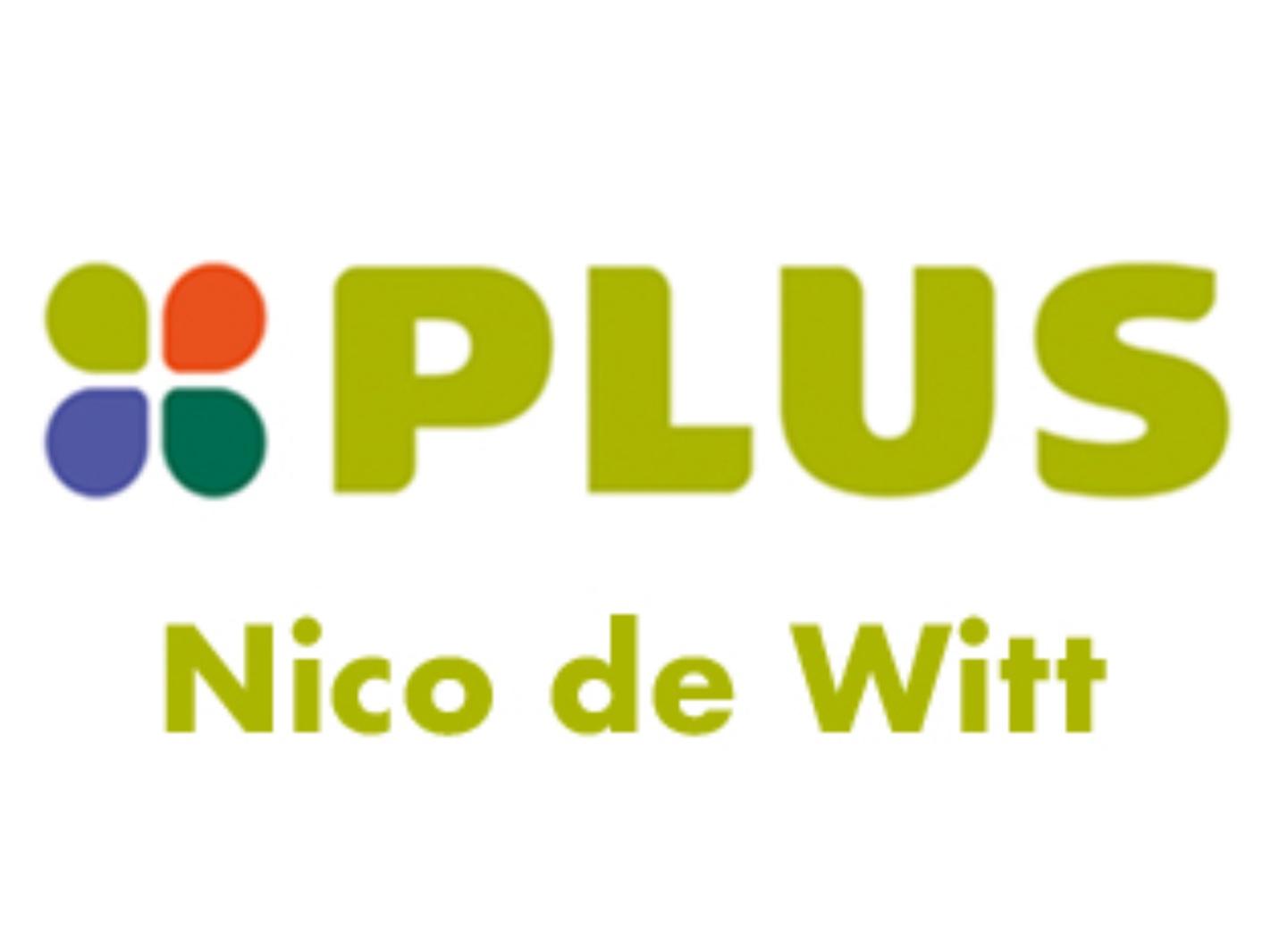 Plus Nice de Witt logo